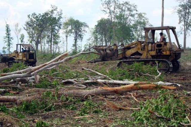 Land+clearing+by+Company+72+(PPP).jpg